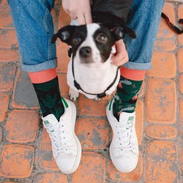 Sammy Icon socks - Mauna Loa