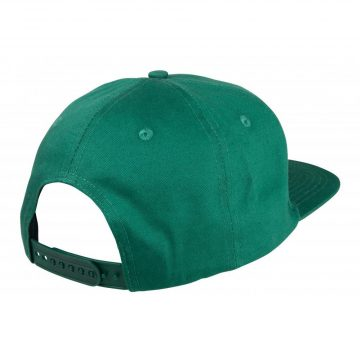 Santa Cruz Cap Classic Dot snapback Evergreen back